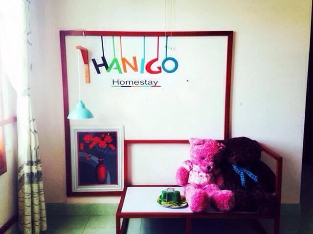 Homestay Đà Nẵng giá rẻ với chủ nhà tốt bụng, thoải mái như ở nhà mình