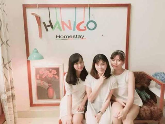 Truy tìm Nhà nghỉ Hanigo Homestay giá RẺ ở Đà Nẵng gần biển, sạch đẹp